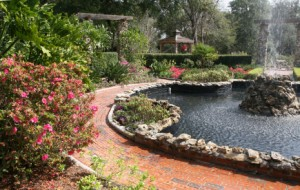 Fort Myers Landscape Design
