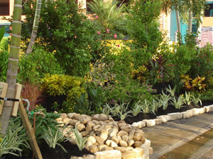 Lehigh acres landscape design fort myers lawn maintenance retaining walls landscaping for Myers lawn and garden